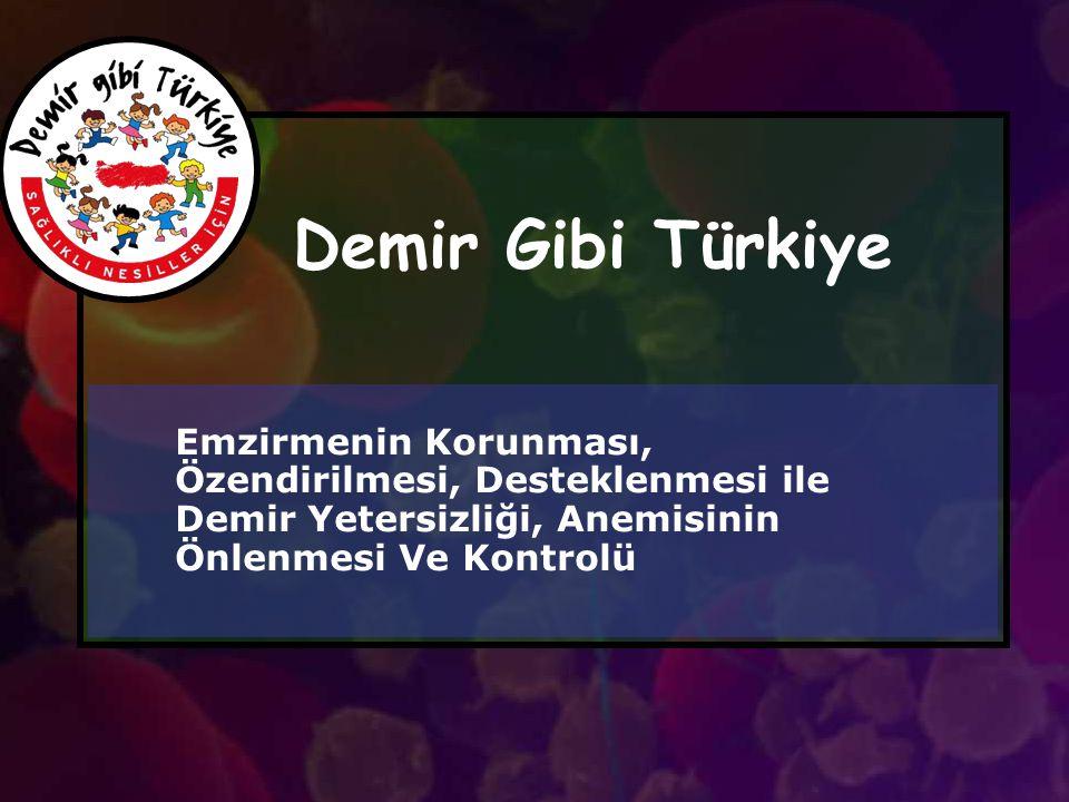Demir Gibi Türkiye Emzirmenin Korunması, Özendirilmesi, Desteklenmesi ile Demir Yetersizliği, Anemisinin Önlenmesi Ve Kontrolü