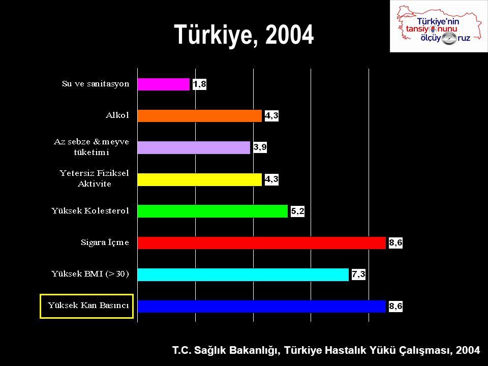 Türkiye, 2004 T.C. Sağlık Bakanlığı, Türkiye Hastalık Yükü Çalışması, 2004