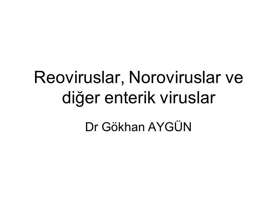 Reoviruslar, Noroviruslar ve diğer enterik viruslar Dr Gökhan AYGÜN