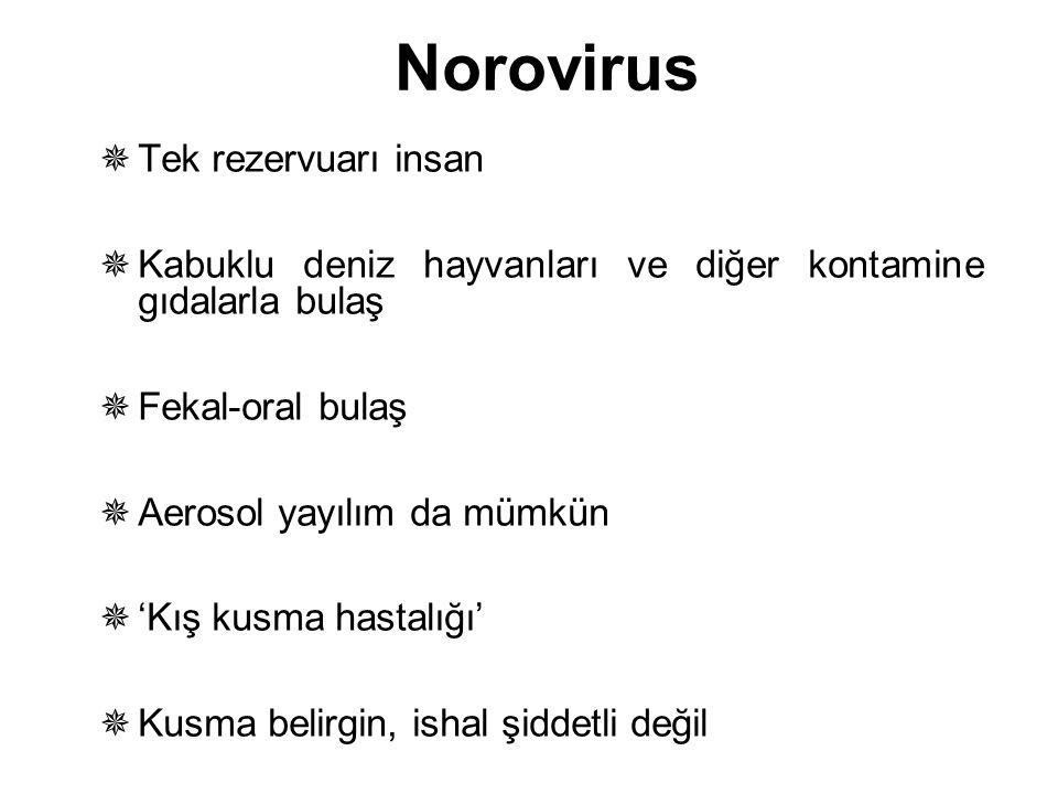 Norovirus  Tek rezervuarı insan  Kabuklu deniz hayvanları ve diğer kontamine gıdalarla bulaş  Fekal-oral bulaş  Aerosol yayılım da mümkün  'Kış k