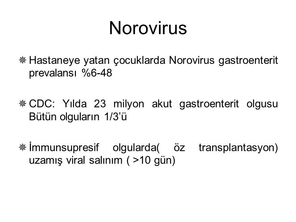 Norovirus  Hastaneye yatan çocuklarda Norovirus gastroenterit prevalansı %6-48  CDC: Yılda 23 milyon akut gastroenterit olgusu Bütün olguların 1/3'ü