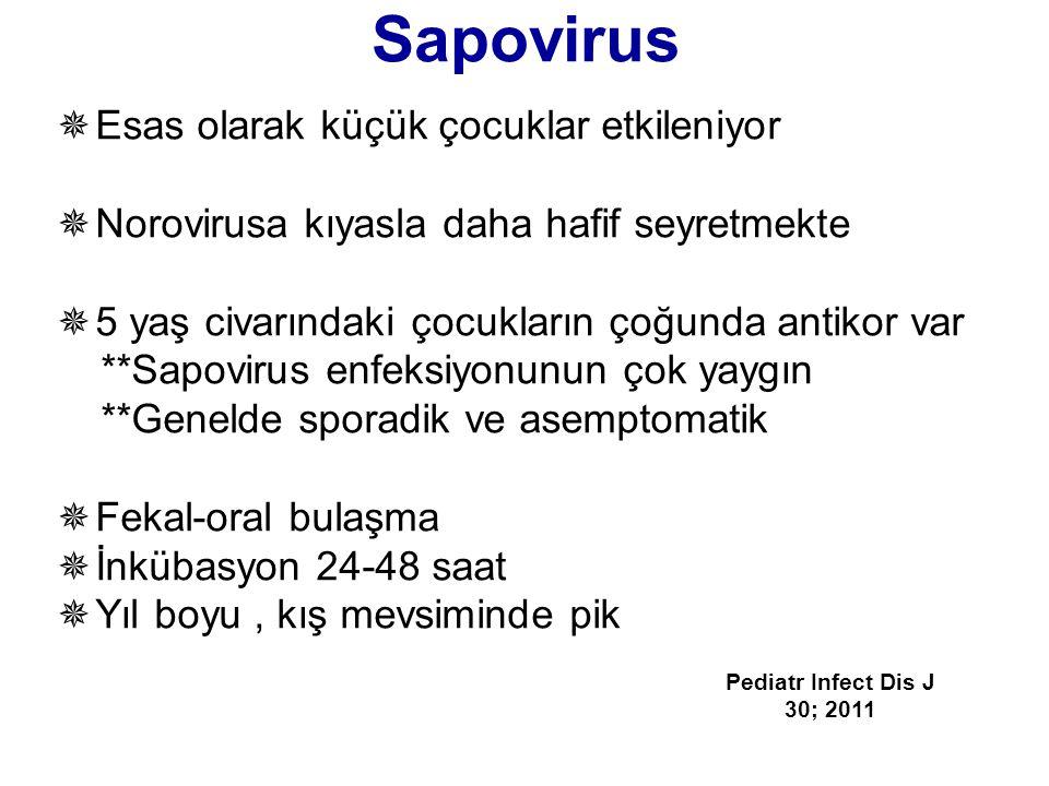Sapovirus  Esas olarak küçük çocuklar etkileniyor  Norovirusa kıyasla daha hafif seyretmekte  5 yaş civarındaki çocukların çoğunda antikor var **Sa