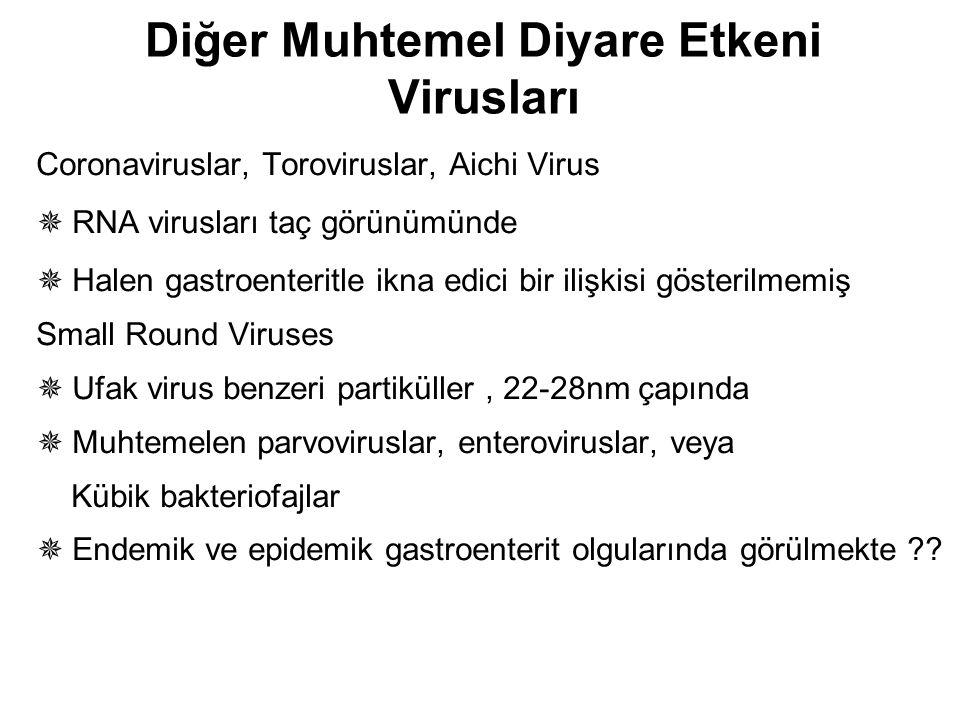 Diğer Muhtemel Diyare Etkeni Virusları Coronaviruslar, Toroviruslar, Aichi Virus  RNA virusları taç görünümünde  Halen gastroenteritle ikna edici bi