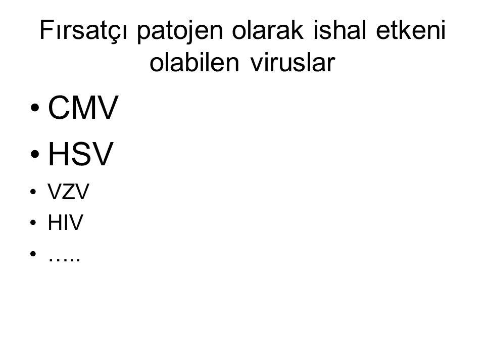 Fırsatçı patojen olarak ishal etkeni olabilen viruslar •CMV •HSV •VZV •HIV •…..