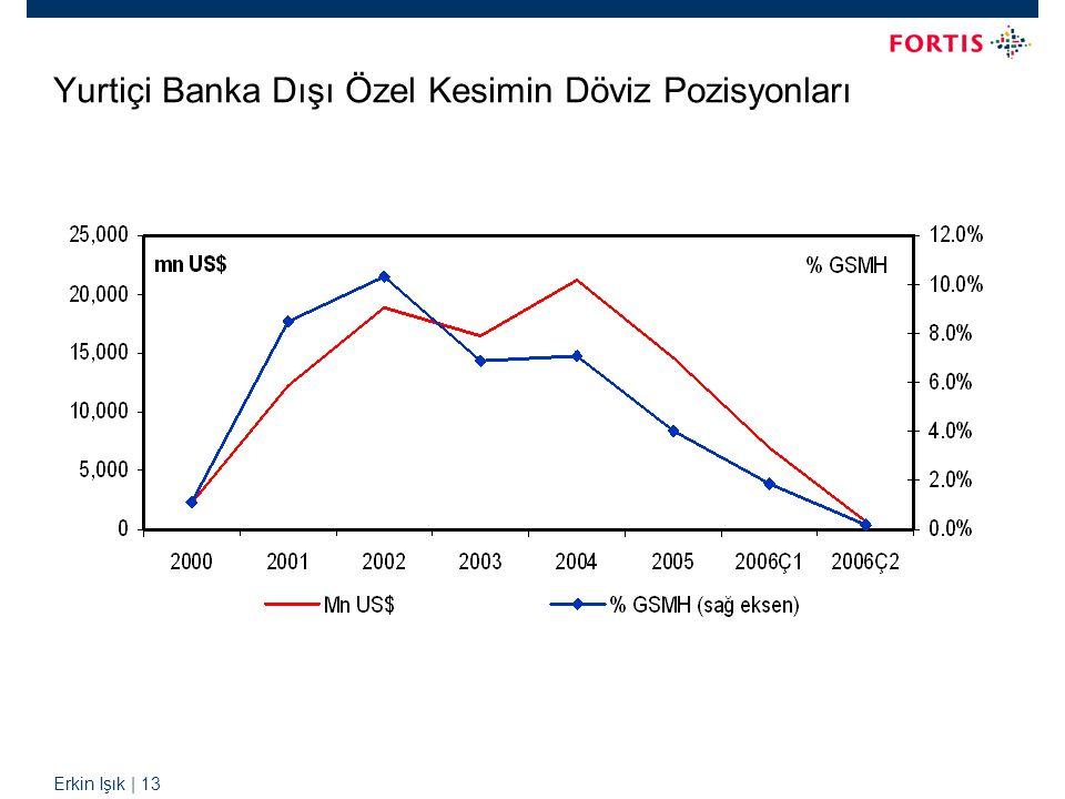 Erkin Işık | 13 Yurtiçi Banka Dışı Özel Kesimin Döviz Pozisyonları
