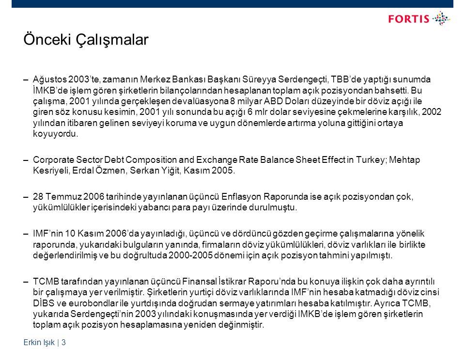 Erkin Işık | 3 Önceki Çalışmalar –Ağustos 2003'te, zamanın Merkez Bankası Başkanı Süreyya Serdengeçti, TBB'de yaptığı sunumda İMKB'de işlem gören şirketlerin bilançolarından hesaplanan toplam açık pozisyondan bahsetti.