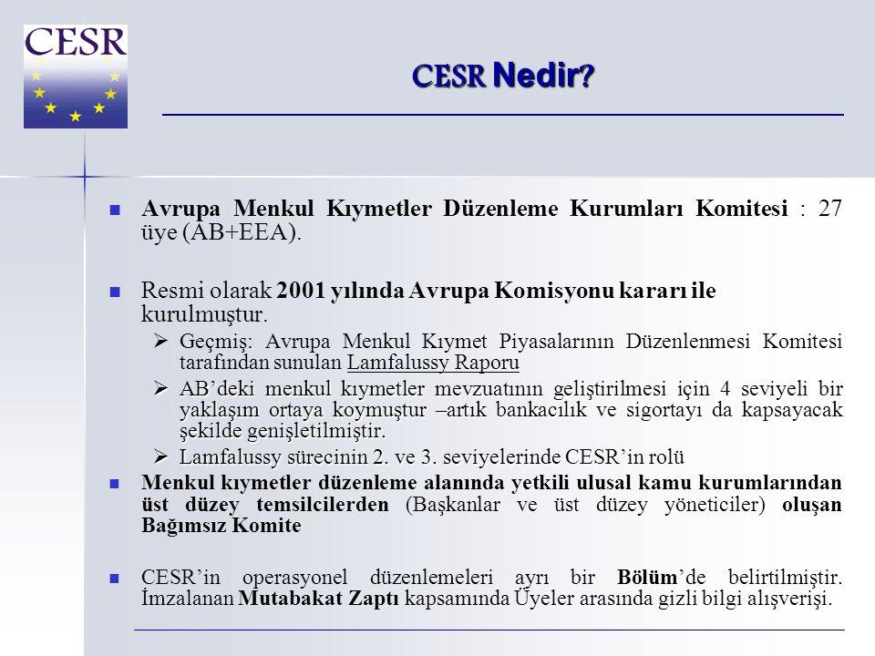 CESR-Fin - Organizasyon CESR-Fin SCE EECS ATFSISE ARC SAC EFRAG