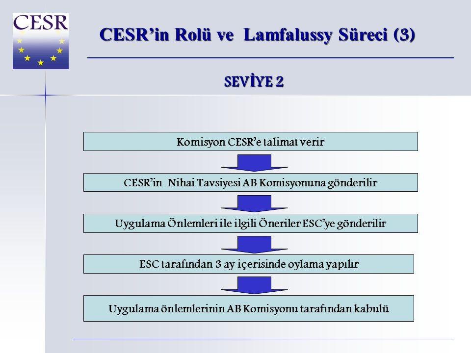 CESR-Fin Alt Komiteleri (2) ATF (Denetim Görev Gücü) AB'deki düzenleyici geli ş melerin izlenmesi – özellikle halka açık ş irketlerin denetimi  8.