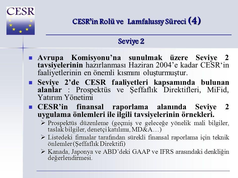   Avrupa Komisyonu'na sunulmak üzere Seviye 2 tavsiyelerinin hazırlanması Haziran 2004'e kadar CESR'in faaliyetlerinin en önemli kısmını oluşturmuştur.
