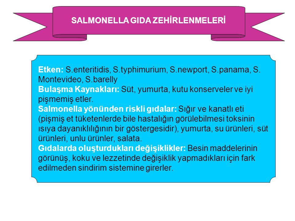 SALMONELLA GIDA ZEHİRLENMELERİ Etken: S.enteritidis, S.typhimurium, S.newport, S.panama, S. Montevideo, S.barelly Bulaşma Kaynakları: Süt, yumurta, ku