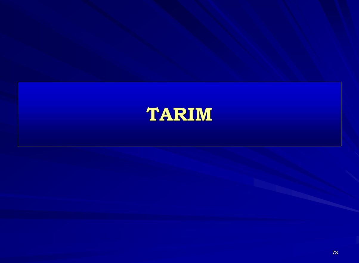 73 TARIM