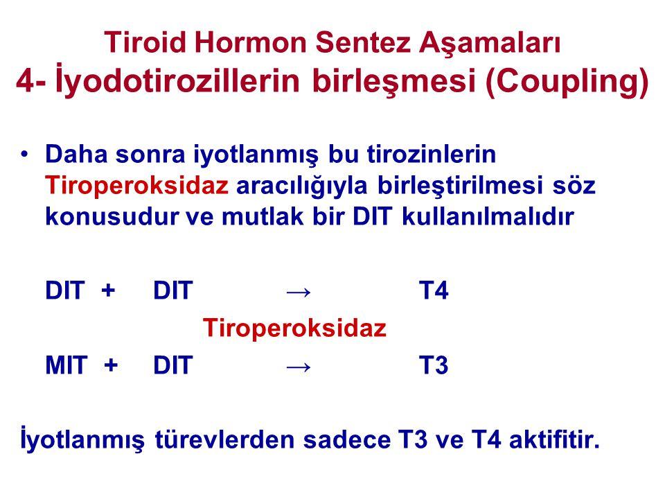 Tiroid Hormon Sentez Aşamaları 4- İyodotirozillerin birleşmesi (Coupling) •Daha sonra iyotlanmış bu tirozinlerin Tiroperoksidaz aracılığıyla birleştir