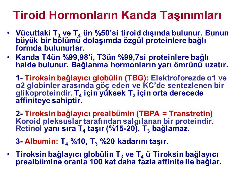 Tiroid Hormonların Kanda Taşınımları •Vücuttaki T 3 ve T 4 ün %50'si tiroid dışında bulunur. Bunun büyük bir bölümü dolaşımda özgül proteinlere bağlı
