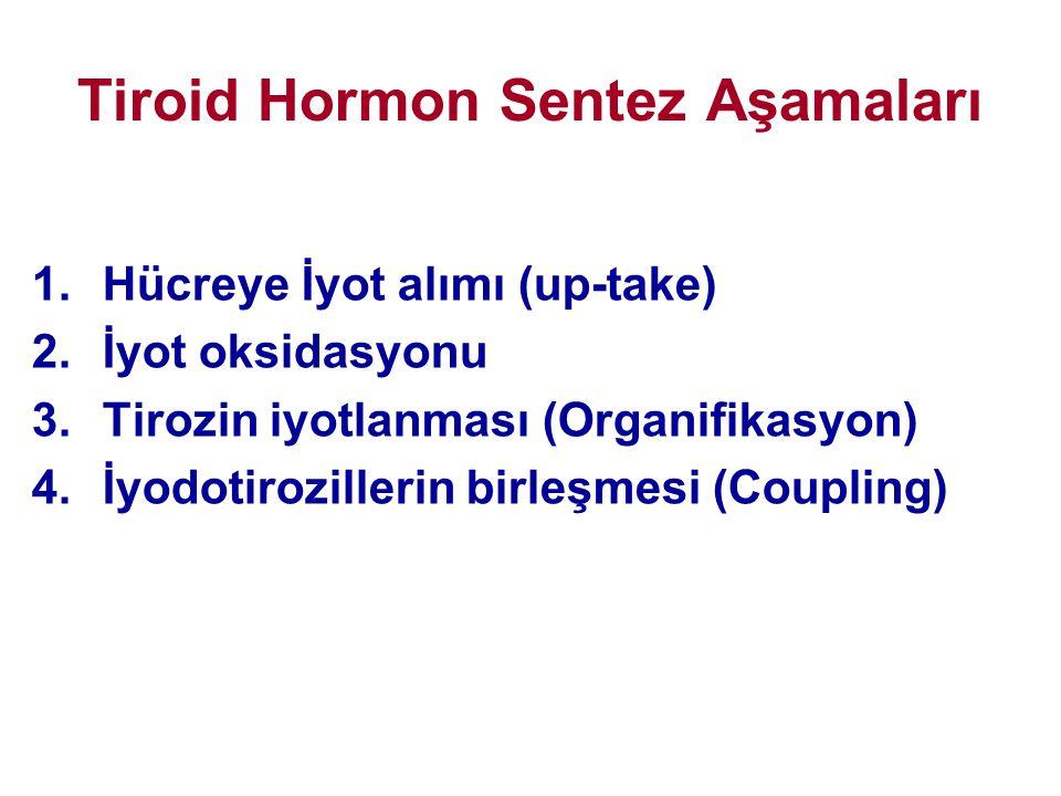 Tiroid Hormon Sentez Aşamaları 1.Hücreye İyot alımı (up-take) 2.İyot oksidasyonu 3.Tirozin iyotlanması (Organifikasyon) 4.İyodotirozillerin birleşmesi
