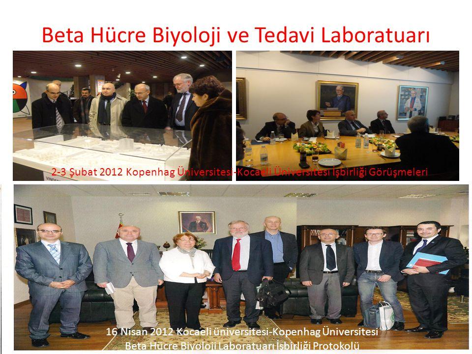 Beta Hücre Biyoloji ve Tedavi Laboratuarı 2-3 Şubat 2012 Kopenhag Üniversitesi-Kocaeli Üniversitesi İşbirliği Görüşmeleri 16 Nisan 2012 Kocaeli üniver