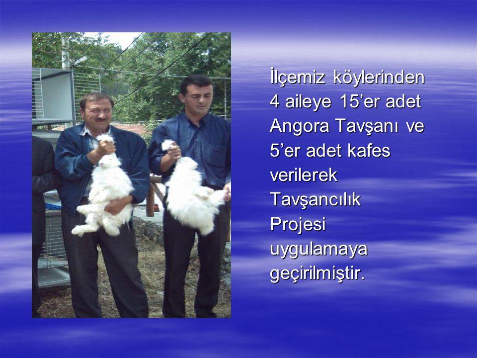 İlçemiz köylerinden 4 aileye 15'er adet Angora Tavşanı ve 5'er adet kafes verilerekTavşancılıkProjesiuygulamayageçirilmiştir.