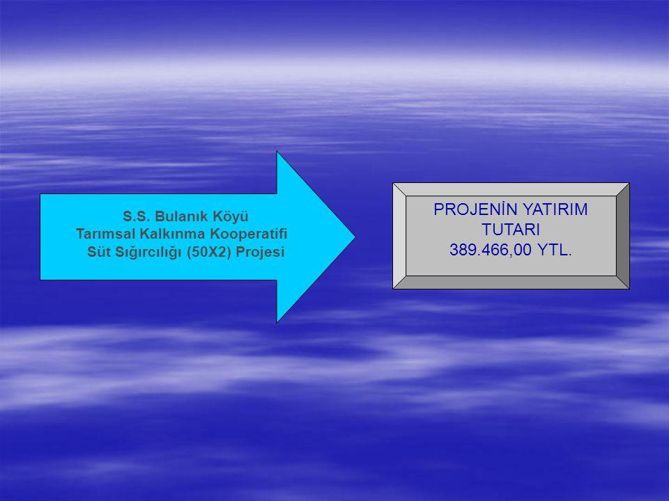 PROJENİN YATIRIM TUTARI 389.466,00 YTL. S.S.