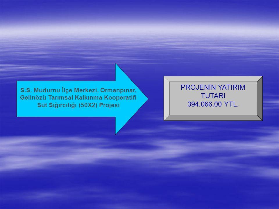 PROJENİN YATIRIM TUTARI 394.066,00 YTL. S.S.