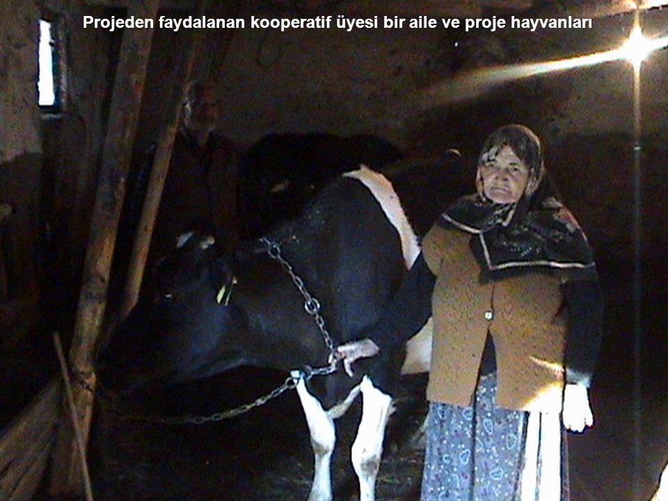 Projeden faydalanan kooperatif üyesi bir aile ve proje hayvanları