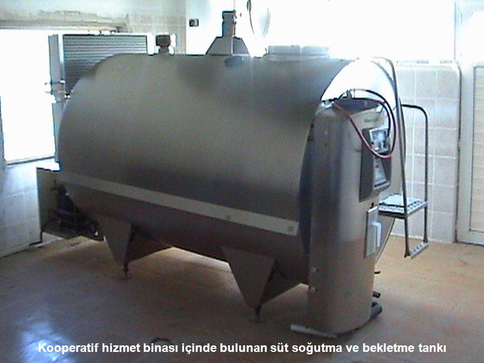Kooperatif hizmet binası içinde bulunan süt soğutma ve bekletme tankı