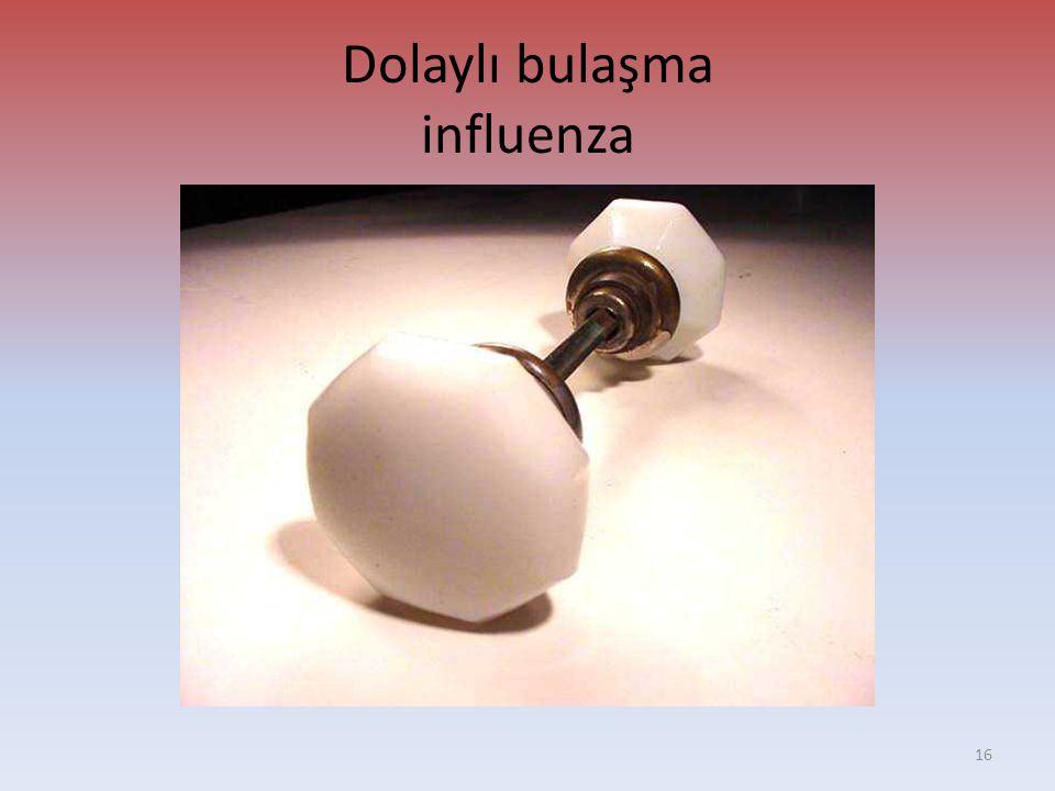 Dolaylı bulaşma influenza 16
