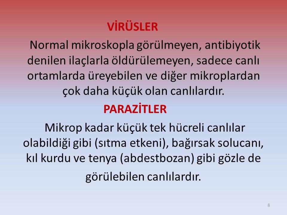 Etkeni: • Çeşitli virüsler.