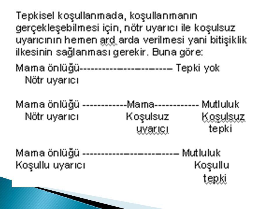 Aşağıdaki örnekler hangi kavrama örnek gösterilebilir.