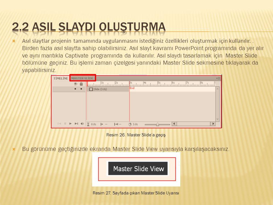  Asıl slaytlar projenin tamamında uygulanmasını istediğiniz özellikleri oluşturmak için kullanılır..