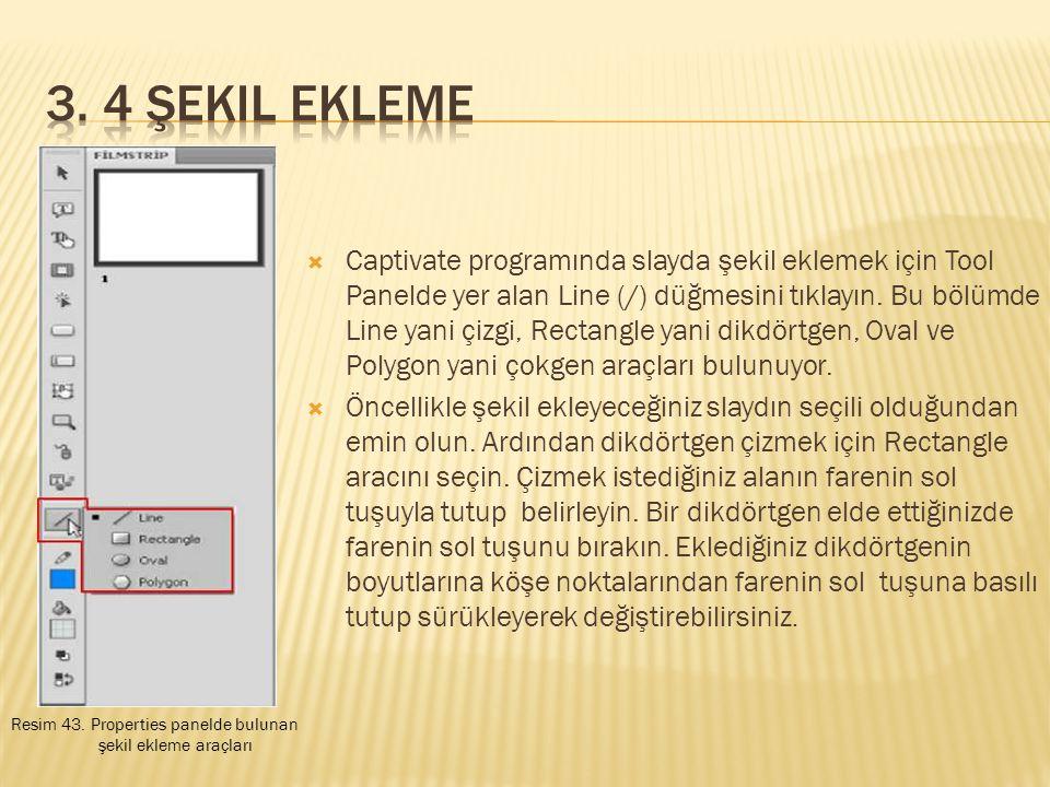  Captivate programında slayda şekil eklemek için Tool Panelde yer alan Line (/) düğmesini tıklayın.