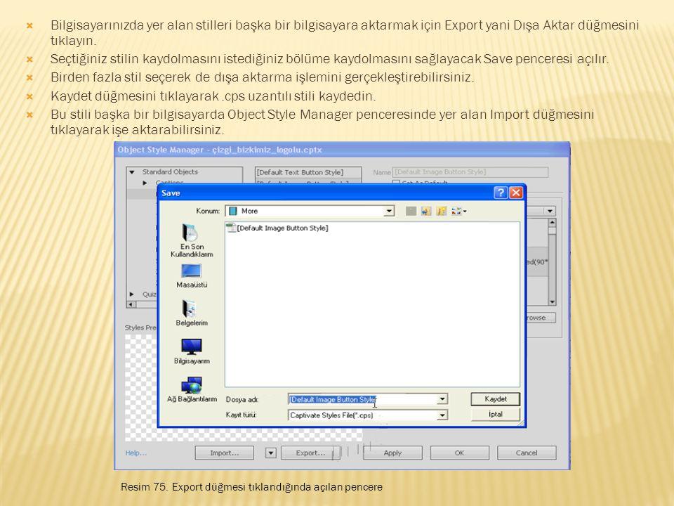  Bilgisayarınızda yer alan stilleri başka bir bilgisayara aktarmak için Export yani Dışa Aktar düğmesini tıklayın.