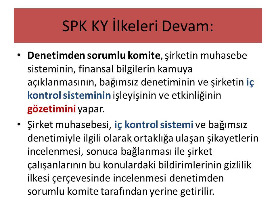 SPK KY İlkeleri Devam: • Denetimden sorumlu komite, şirketin muhasebe sisteminin, finansal bilgilerin kamuya açıklanmasının, bağımsız denetiminin ve ş