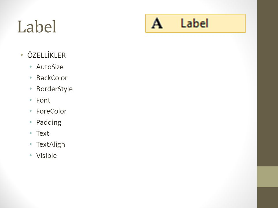 Label • ÖZELLİKLER • AutoSize • BackColor • BorderStyle • Font • ForeColor • Padding • Text • TextAlign • Visible