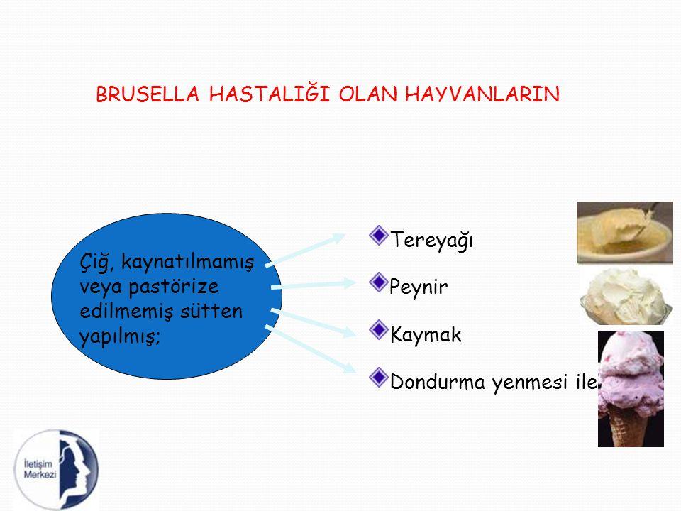 BRUSELLA HASTALIĞI OLAN HAYVANLARIN Tereyağı Peynir Kaymak Dondurma yenmesi ile Çiğ, kaynatılmamış veya pastörize edilmemiş sütten yapılmış;