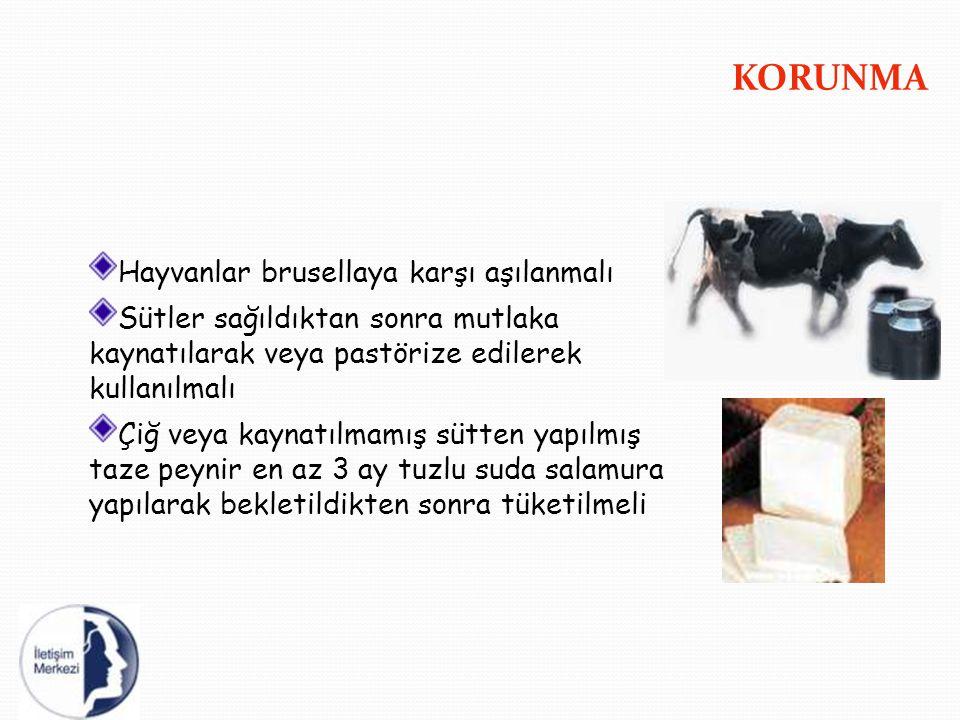 KORUNMA Hayvanlar brusellaya karşı aşılanmalı Sütler sağıldıktan sonra mutlaka kaynatılarak veya pastörize edilerek kullanılmalı Çiğ veya kaynatılmamı