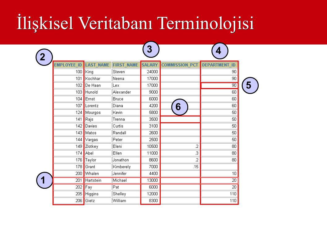 İlişkisel Veritabanı Terminolojisi 1 2 3 4 6 5