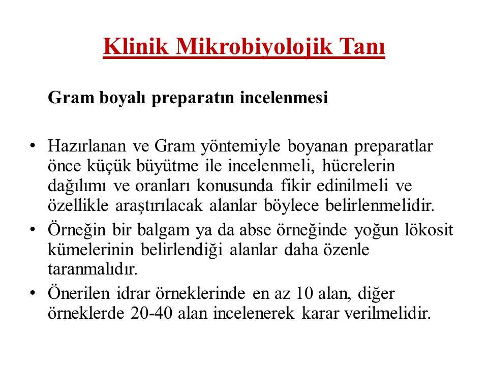 Klinik Mikrobiyolojik Tanı Gram boyama yöntemi: Hücre yönünden değerlendirme açısından ; • (+) : Tek tük /seyrek....