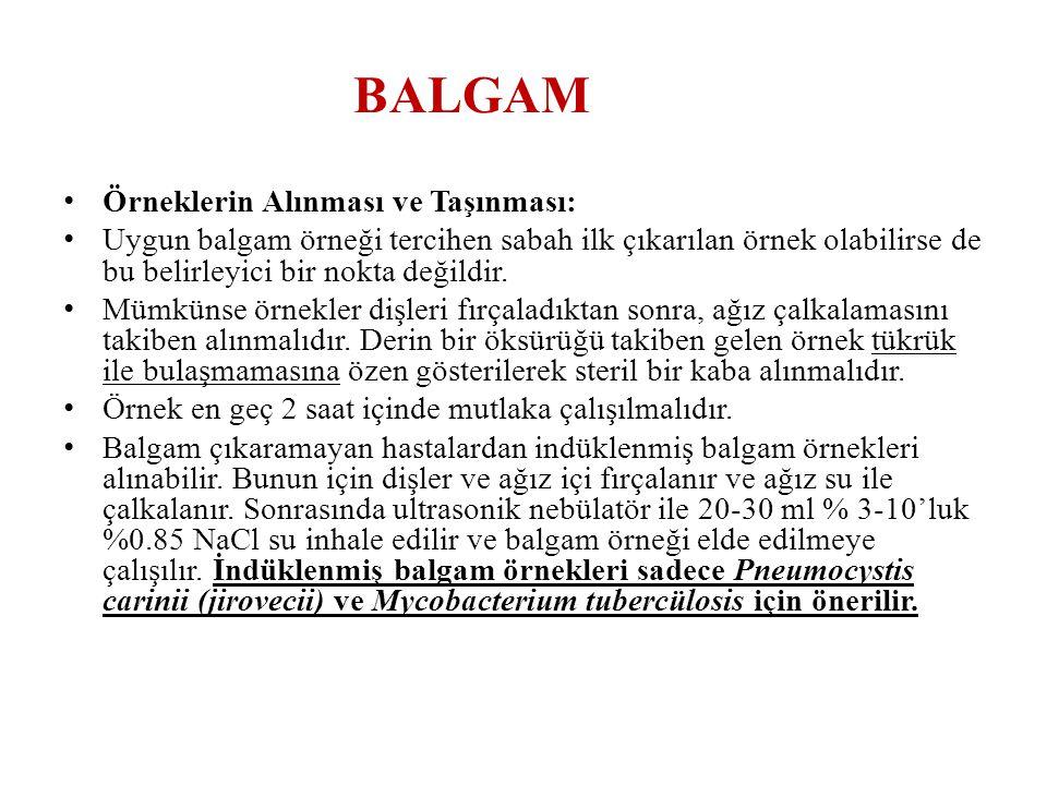BALGAM • Örneklerin Alınması ve Taşınması: • Uygun balgam örneği tercihen sabah ilk çıkarılan örnek olabilirse de bu belirleyici bir nokta değildir. •