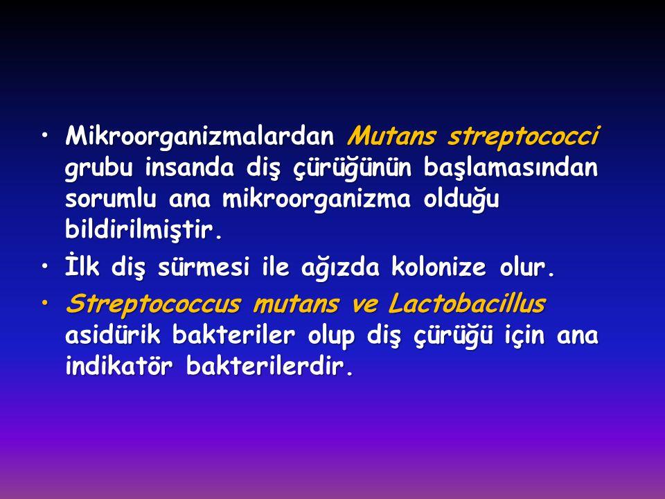•Mikroorganizmalardan Mutans streptococci grubu insanda diş çürüğünün başlamasından sorumlu ana mikroorganizma olduğu bildirilmiştir. •İlk diş sürmesi