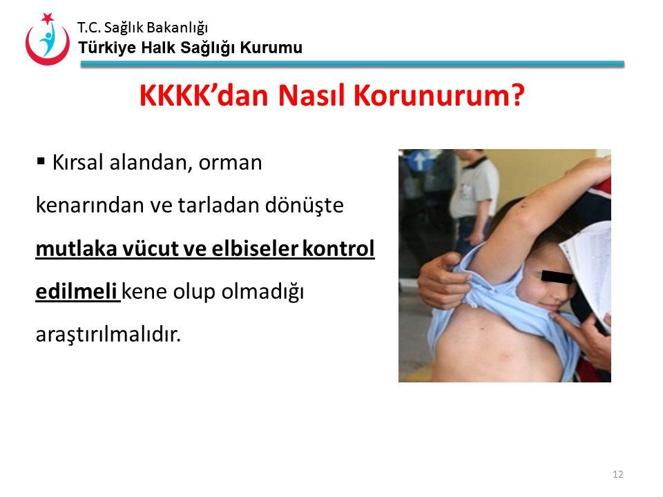 T.C. Sağlık Bakanlığı Türkiye Halk Sağlığı Kurumu T.C. Sağlık Bakanlığı Türkiye Halk Sağlığı Kurumu 11 KKKK'dan Nasıl Korunurum?  Hayvan barınakların