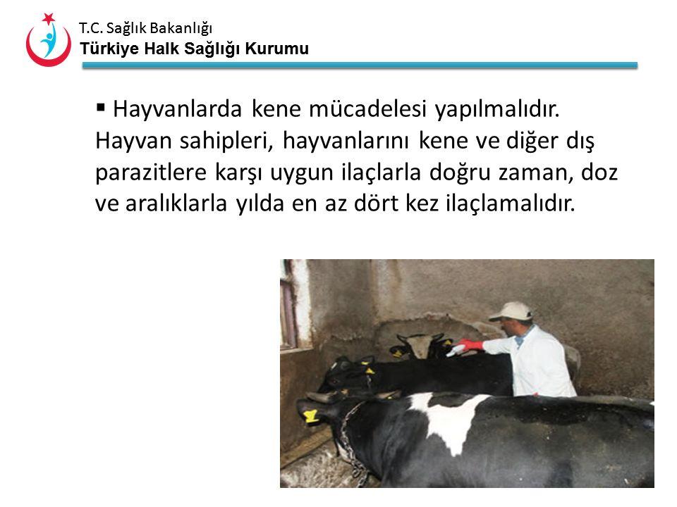 T.C. Sağlık Bakanlığı Türkiye Halk Sağlığı Kurumu T.C. Sağlık Bakanlığı Türkiye Halk Sağlığı Kurumu 18  Hastalık hayvanlarda belirti göstermeden seyr