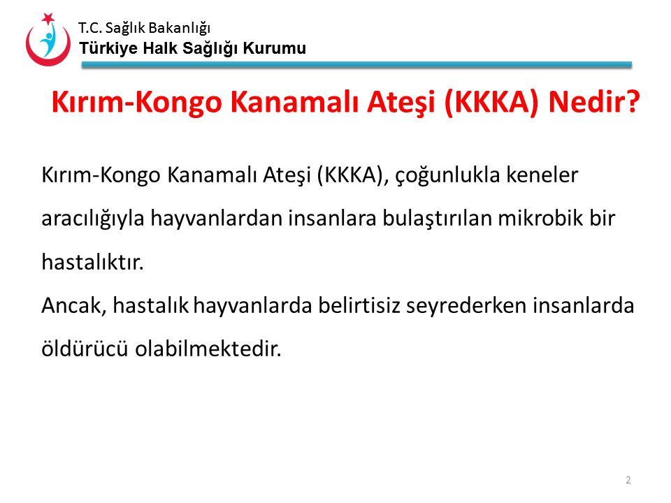 T.C. Sağlık Bakanlığı Türkiye Halk Sağlığı Kurumu T.C. Sağlık Bakanlığı Türkiye Halk Sağlığı Kurumu Kırım Kongo Kanamalı Ateşi (KKKA) 1