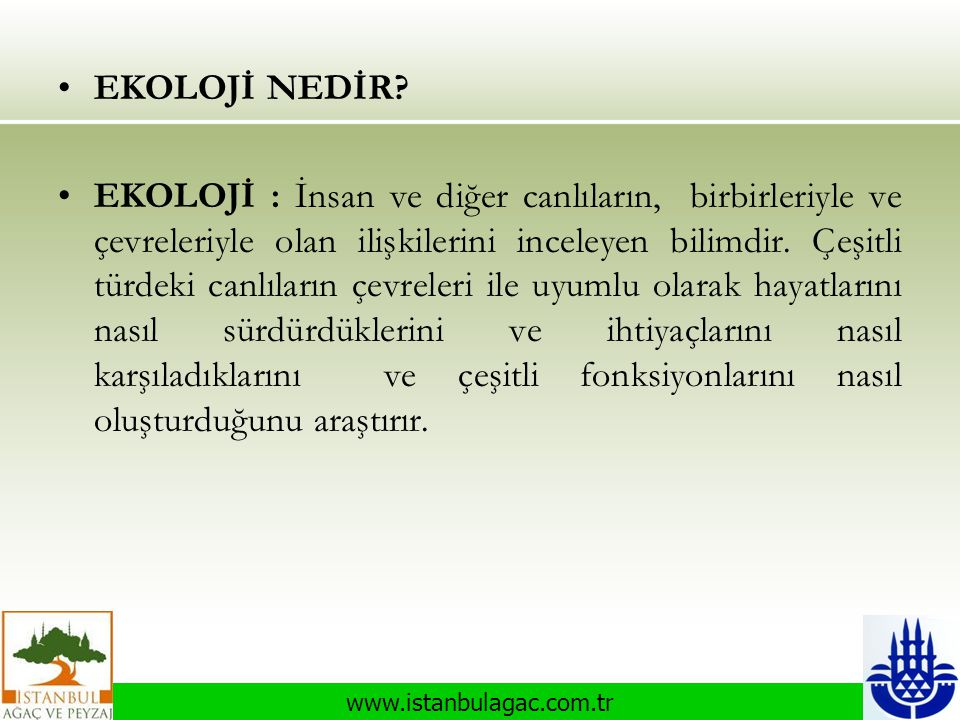 www.istanbulagac.com.tr •EKOLOJİ NEDİR? •EKOLOJİ : İnsan ve diğer canlıların, birbirleriyle ve çevreleriyle olan ilişkilerini inceleyen bilimdir. Çeşi