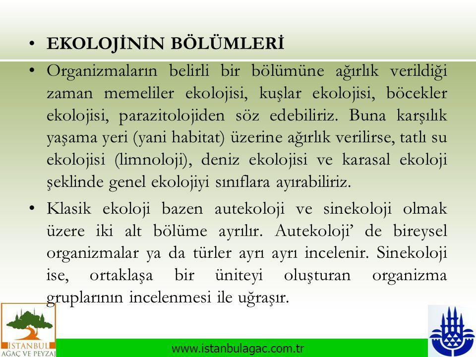 www.istanbulagac.com.tr •EKOLOJİNİN BÖLÜMLERİ •Organizmaların belirli bir bölümüne ağırlık verildiği zaman memeliler ekolojisi, kuşlar ekolojisi, böce