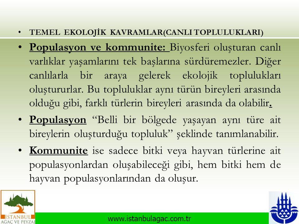 www.istanbulagac.com.tr •TEMEL EKOLOJİK KAVRAMLAR(CANLI TOPLULUKLARI) •Populasyon ve kommunite: Biyosferi oluşturan canlı varlıklar yaşamlarını tek ba