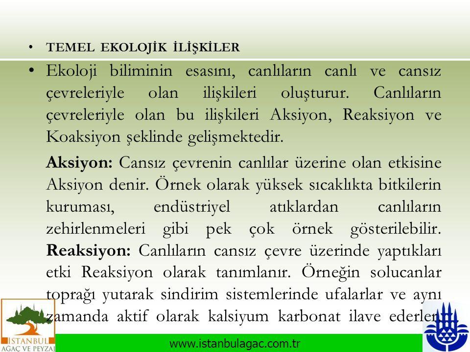 www.istanbulagac.com.tr •TEMEL EKOLOJİK İLİŞKİLER •Ekoloji biliminin esasını, canlıların canlı ve cansız çevreleriyle olan ilişkileri oluşturur. Canlı