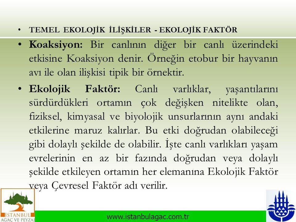 www.istanbulagac.com.tr •TEMEL EKOLOJİK İLİŞKİLER - EKOLOJİK FAKTÖR •Koaksiyon: Bir canlının diğer bir canlı üzerindeki etkisine Koaksiyon denir. Örne