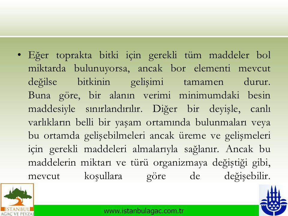 www.istanbulagac.com.tr •Eğer toprakta bitki için gerekli tüm maddeler bol miktarda bulunuyorsa, ancak bor elementi mevcut değilse bitkinin gelişimi t
