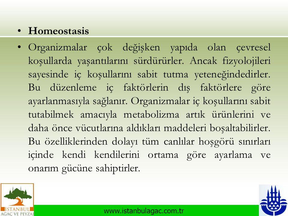 www.istanbulagac.com.tr •Homeostasis •Organizmalar çok değişken yapıda olan çevresel koşullarda yaşantılarını sürdürürler. Ancak fizyolojileri sayesin