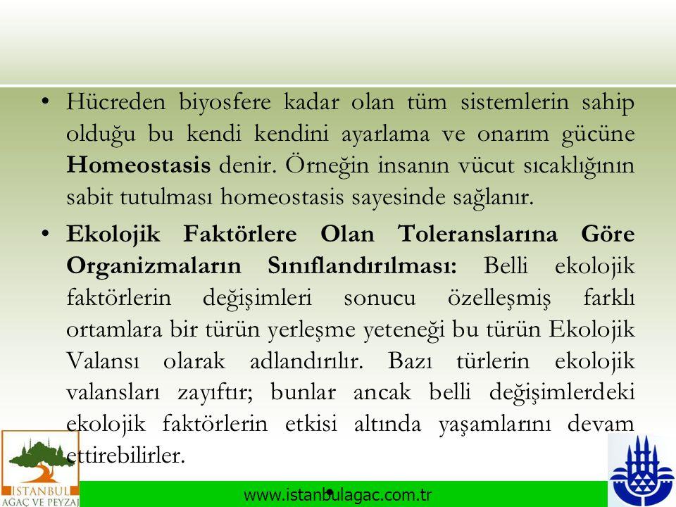 www.istanbulagac.com.tr •Hücreden biyosfere kadar olan tüm sistemlerin sahip olduğu bu kendi kendini ayarlama ve onarım gücüne Homeostasis denir. Örne