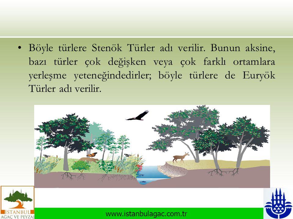 www.istanbulagac.com.tr •Böyle türlere Stenök Türler adı verilir. Bunun aksine, bazı türler çok değişken veya çok farklı ortamlara yerleşme yeteneğind